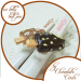 Chocolate Lolly Pen
